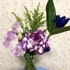 お花のサブスクbloomee 2ヶ月お休みして再開
