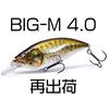 【Megabass】他社と差別化したフラットサイドマグナムクランク「BIG-M 4.0」再出荷!