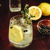 no.73 Gin 1