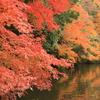 2016年12月3日 亀山湖