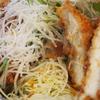ガツ盛り野菜のチキンカツ丼