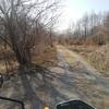 春の陽気に河川敷を探索