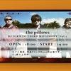 the pillows @ Zepp DiverCity(TOKYO) / Shortcut Miffy! @ 吉祥寺ichibee / Reborn-Art Festival 東京展 @ ワタリウム美術館