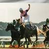 『競馬パネル:ナリタトップロード「1999年:第60回菊花賞」』