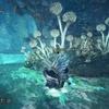 ぶんどり王の遺産09 オタカラ攻略 瘴気の谷編 モンスターハンターワールド:アイスボーン