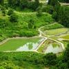 山古志の養鯉池群(新潟県)