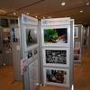 国連加盟60周年記念行事サイドイベント 【写真パネル展・動画上映 オープニング・セレモニー】