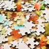 モヤモヤは完成図のないパズルを組み立てるように