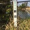 『新池(菊川市内田)』掛川野池群バス釣り完全攻略マップ
