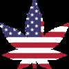 アメリカで大麻解禁が進んだワケとは?