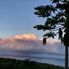 KailuaVillage (カイルア村)