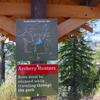 Barrier Lake(G5)のハイキングー地元の人に人気のコース
