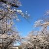 大分別府から福岡県への旅 アマネリゾートガハマ