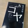 ゴヤⅠ〜Ⅳ読了