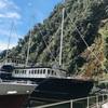 ニュージーランドドライブ旅(ミルフォードサウンド、オーバーナイトクルーズ編)