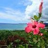 石垣島初日はドライブがてらぐるっと石垣観光、海とグルメを堪能!!