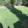 【庭の剪定と芝刈りを実施した】