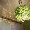 新築で照明を施主支給。葉っぱ型ペンダントライト ディクラッセ オーランドの感想・クチコミ