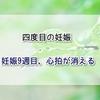 【回顧録】四度目の妊娠 妊娠9週、心拍が消える