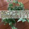 【DIY】100均の葉っぱのインテリアは超便利!!部屋を明るくする万能アイテム!