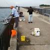 釣場調査 ファミリーフィッシング 秋の 吉良サンライズパーク  (宮崎港)