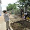 やまびこ:サツマイモを植える
