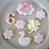 6歳になる女の子へ贈るバースディアイシングクッキーGift♡