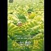 映画「菊次郎の夏」感想 泣ける北野武監督最高傑作(ネタバレあり)