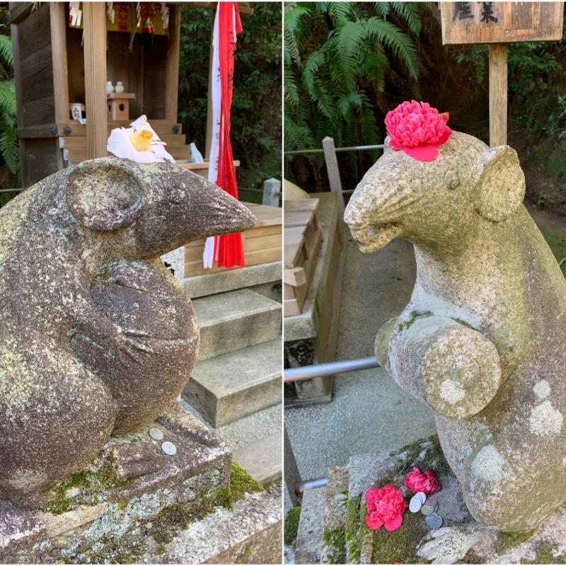 【大豊神社】2020年は子年!希少な狛ねずみが鎮座する神社への初詣はいかが?