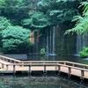 【ホテル】雅叙園に初めて行ってみた。高級だけどオープンで。