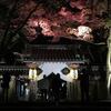 ライトアップされた永源寺の紅葉を観に行ってきた