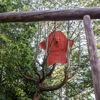 名古屋市最大規模の「白鳥庭園」に潜む異界の者たち『異界庭園』