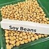 【驚異のバリエーション!!】振り返れば大豆が凄い件
