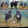 海も貸切の体験!