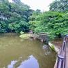 結縁寺池(千葉県印西)