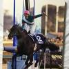 『競馬パネル:シンボリクリスエス「2003年:第48回有馬記念」』