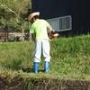 前の家の草刈り
