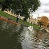 ケンブリッジ観光〜ロンドンからのデイトリップ〜