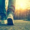 こうやって散歩を習慣化させた(目的を見つける編)【療養中】【散歩】