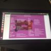 ニンテンドースイッチをUbuntuPCにしてしまおう!(初期設定編)