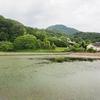 北良池(奈良県葛城)