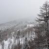 八ヶ岳 スノーシューでいく北横岳