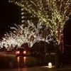 門司港と下関のクリスマスイルミ巡り