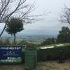 猪子山でタカの渡り ハチクマ
