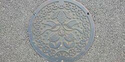 千葉県柏市のマンホール