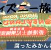 【香港ディズニー旅行VOL.2】公式ホームページで予約してたのに滅茶苦茶だった