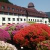 小田急山のホテルはこれからツツジ・しゃくなげ・春バラと花のシーズンです