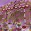 【भारत】結婚式@インド(※動画あり)