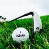 【ゴルフ】ホンマのD1よ、君たちの犠牲を無駄にはしないぞ(涙)