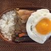 根菜のきんぴらと豚キムチ炒め